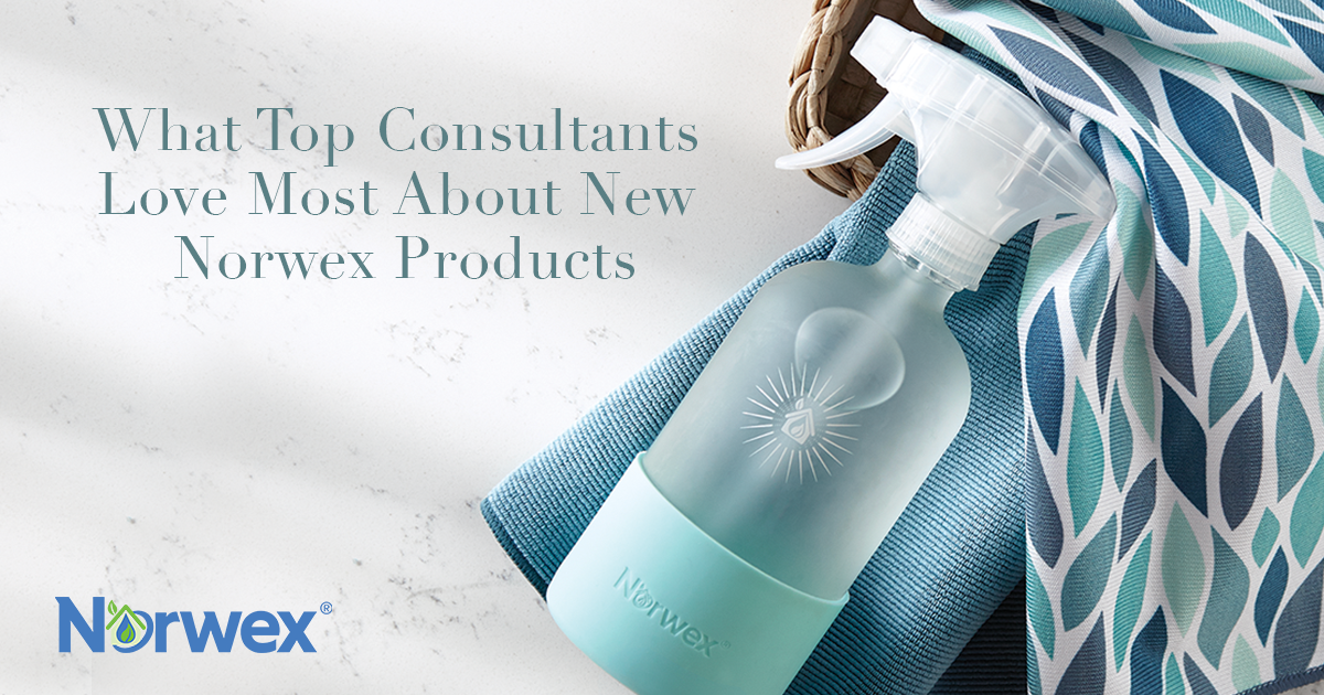 What Top Consultants Love Most about New Norwex Products